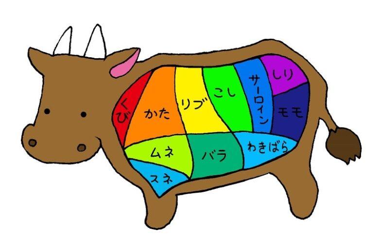 おでん用牛すじ肉の下処理方法~圧力鍋で時短15分