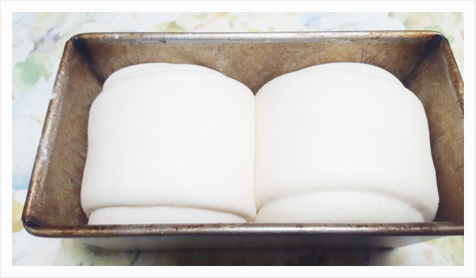 型の8分ほどまで膨らんだら2次発酵は完了